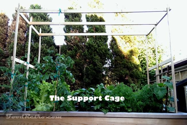 Food Retro SIP Support Cage